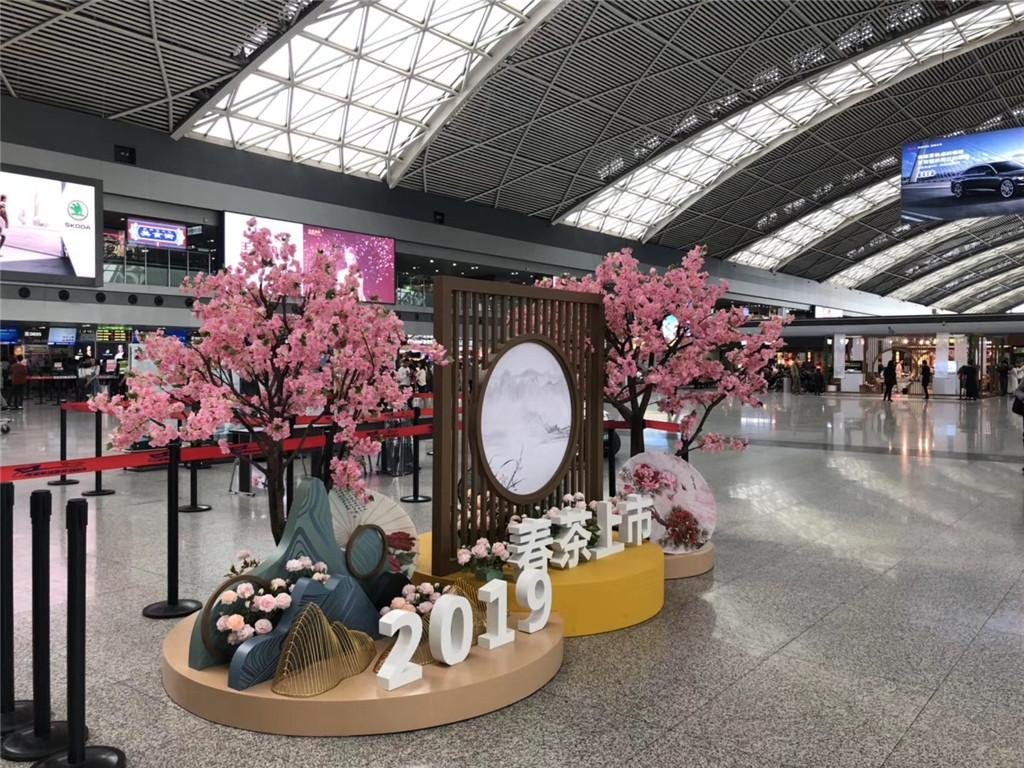 成都机场春茶上市活动策划执行 (3)