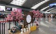 成都机场春茶上市活动策划执行
